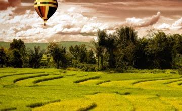 Air Balloon Richmond Hill